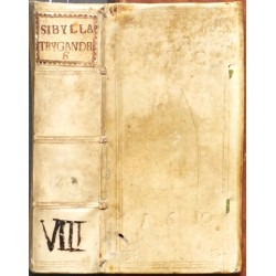 Sibylla TrygAndriana seu De Virginitate, Virginum statu & iure Tractatus