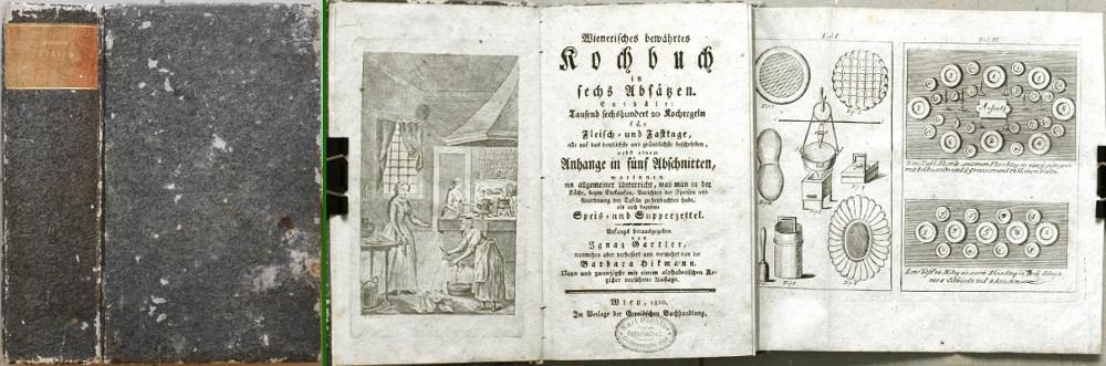 Wienerisches bewährtes Kochbuch in sechs Absätzen