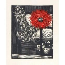 Květ kaktusu