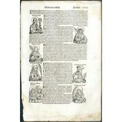 Hartmann Schedel - Liber Chronicarum, 1493 - Folium CXVI