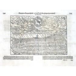 Bern in der Eydtgnoszschafft / an dem Wasser Aar gelegen / figuriert nach ihrer Gelegenheit
