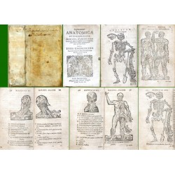 Disputationes anatomicae et psychologicae