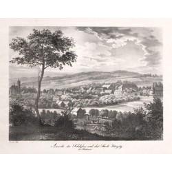 Ansicht des Schlosses und der Stadt Horzitz in Böhmen
