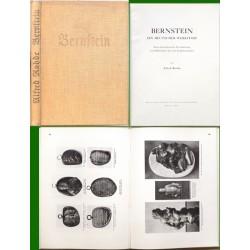 Bernstein ein deutscher Werkstoff