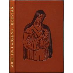 Podivuhodný a poučný příběh diecesního breviáře