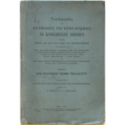 Topographie der Historischen und Kunst-Denkmale im Königreiche Böhmen. Der politische Bezirk Prachatitz
